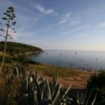 fose-przina-beach-1